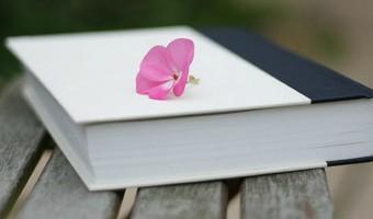 Do You Keep a Diary?