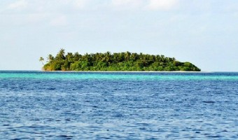 What Would You Bring to a Desert Island?